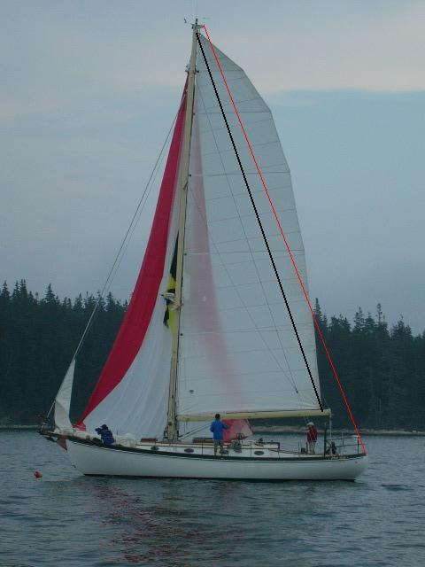 Full Length battens CAN provide los of roach, but in this case there is not backstay. BUT this is a custom built boat intended to have no backstay.
