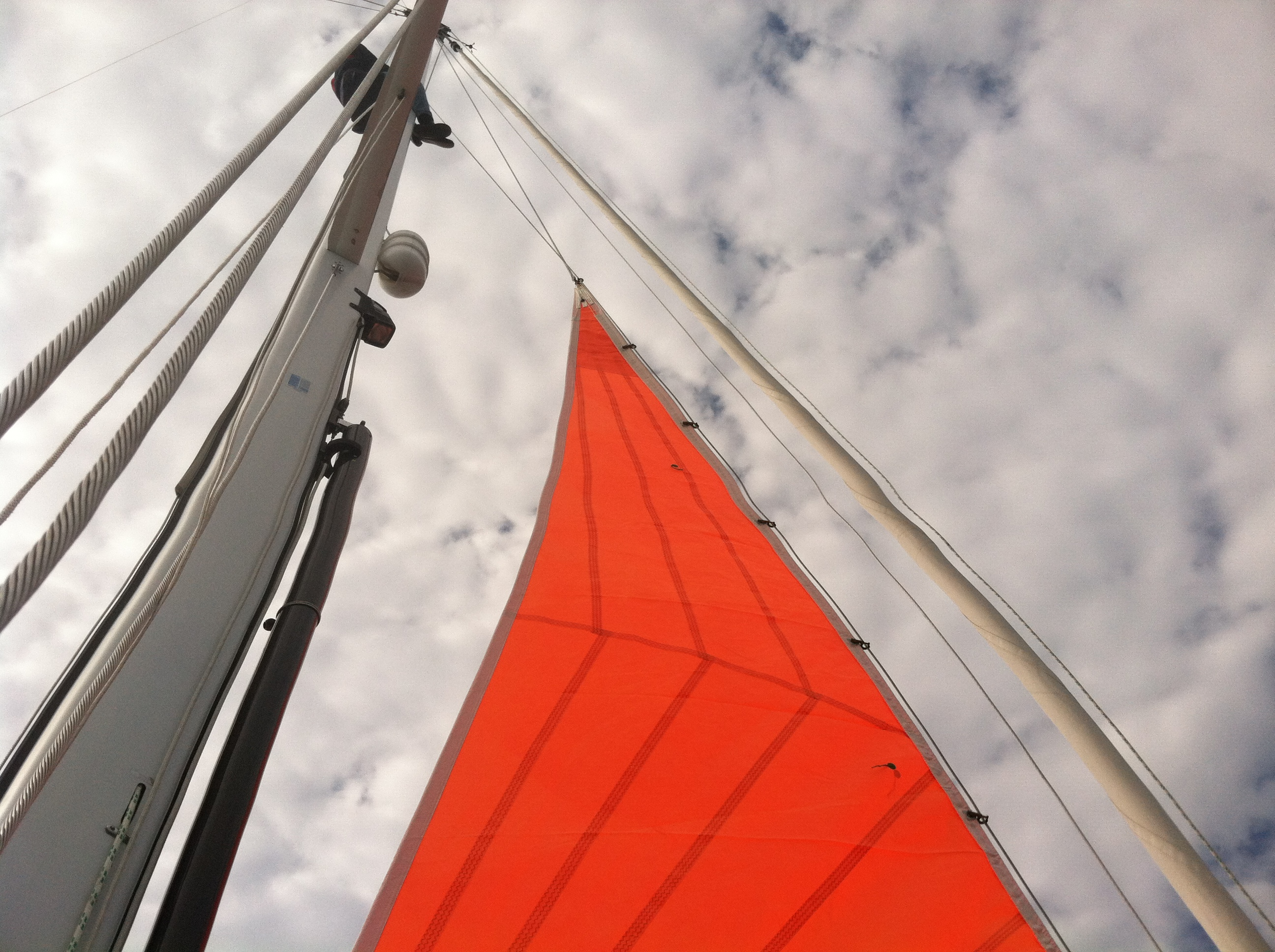 Storm sails built after 2014 are required to be a high visibility color.