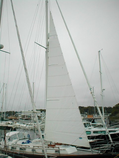 Forestaysails commonly qualify as Heavy Weather Jib